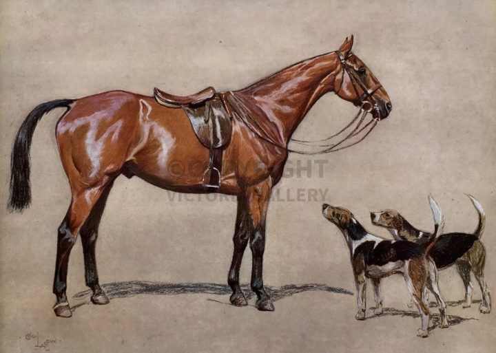Cecil Aldin. 'Brains' the Hunter and hound couple at foot