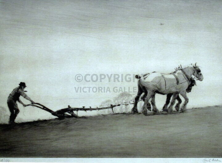 Cecil Aldin - Ploughing. SLE etching /100
