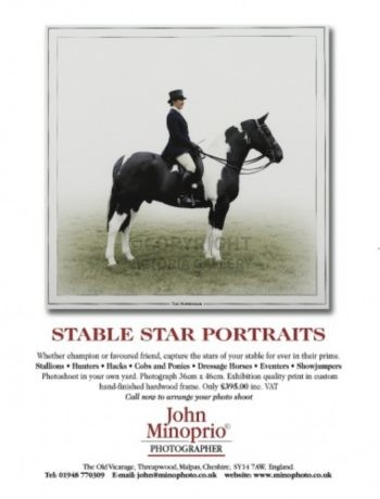 Stable Star Portraits