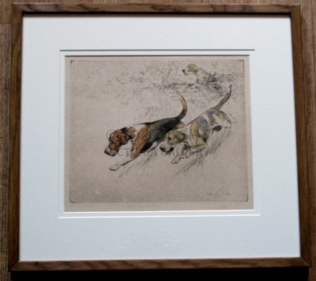 Foxhounds etching by G Vernon Stokes