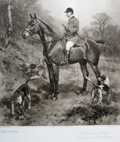 Fred Champion on 'Tally Ho' – Huntsman to The Cheshire Hounds 1909