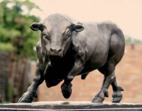 Large Bronze Limousin Bull by Andrew Edmonds