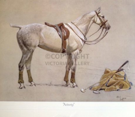 'ACTIVITY' the Polo Pony by Cecil Aldin