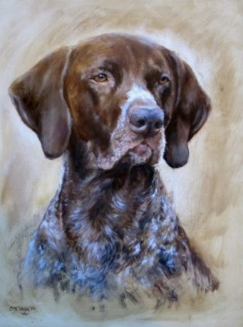 My GSP 'ROLY' by Sarah Clegg