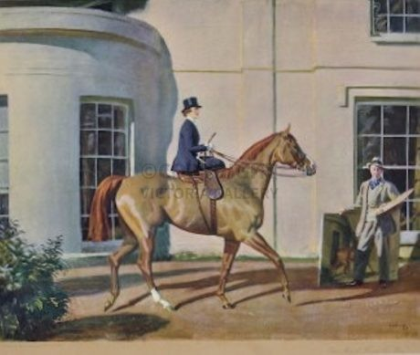 'Our Mutual Friend the Horse' by Sir Alfred J Munnings