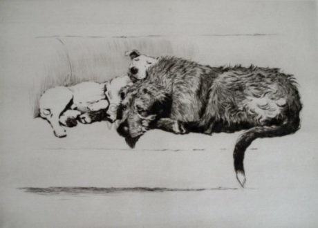 'Sleeping Partners' etching by Cecil Aldin