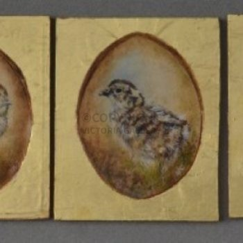 Sarah Clegg – Three Game Chicks  – oil on Gesso panels & 23.5ct gold