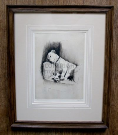Cracker – Signed ltd etching by Cecil Aldin