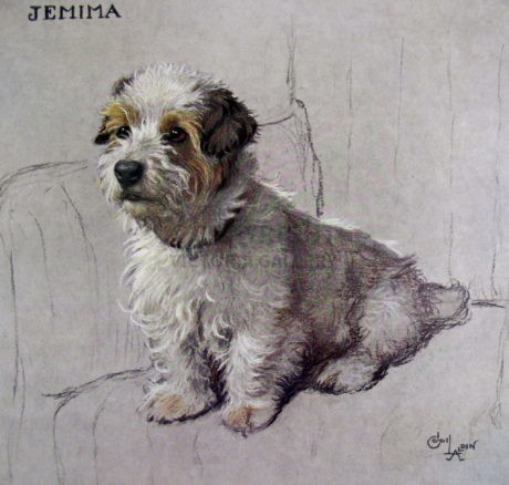 'Jemima' the Sealyham by Cecil Aldin