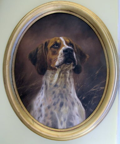 Original oil on canvas of a 'Foxhound' by Mick Cawston