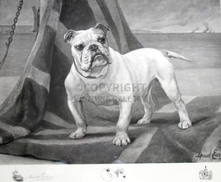 Dimboola Champion Bulldog 'What we have we'll hold.' by Maud Earl
