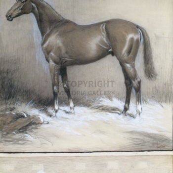 Original Painting 'Right Royal' (TB) by Cecil Aldin