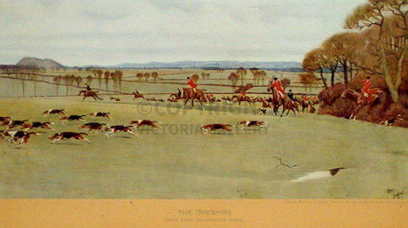 Cecil Aldin – The Cheshire Hunt – Away from Peckforton Wood
