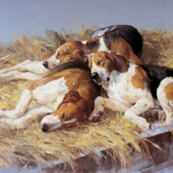'Three Hounds' by Andre Pater